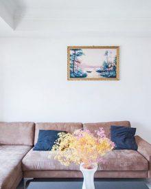 House sofa garden renting deposit
